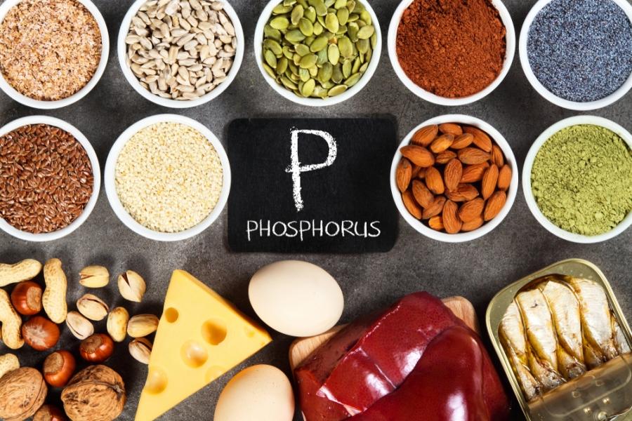 RPP rapport protido phosphorique