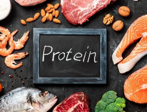 Le rapport protido-calorique