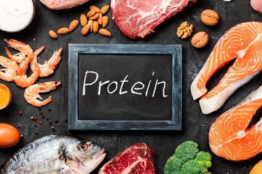 RPC rapport protido-calorique